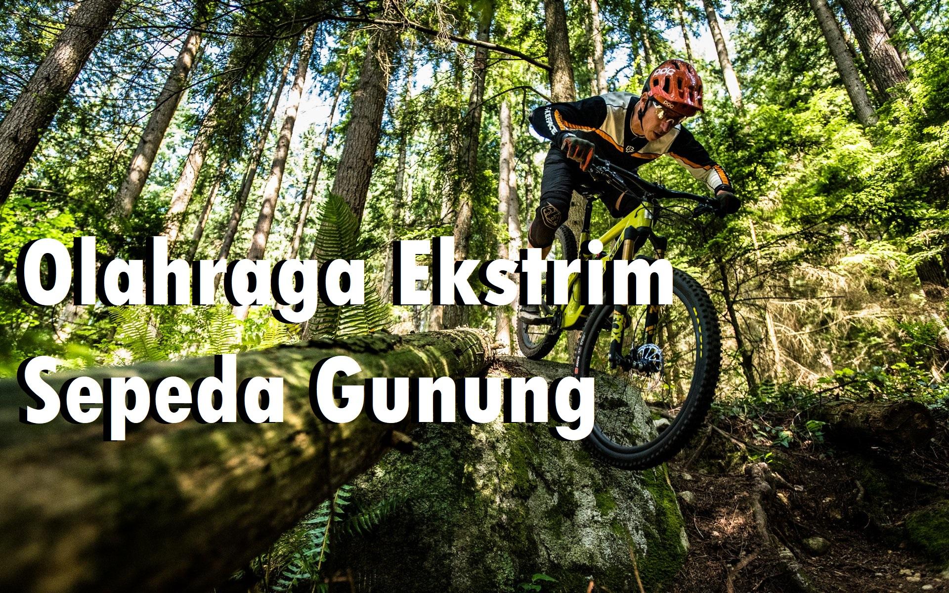 Olahraga Ekstrim Sepeda Gunung