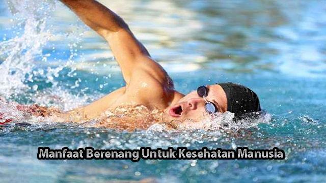 Manfaat Berenang Untuk Kesehatan Manusia Bagi Anda